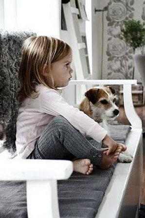 I love dogs <3