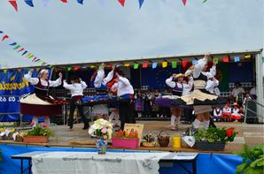 Festival de Meung sur Loire du 16.06.13