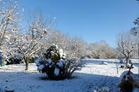 ce matin soleil et avec la neige c'est magnifique