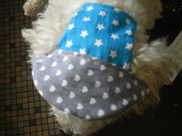 petite casquette pour chiens ou chats en tissus coton