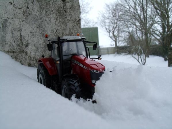 Mini dans le neige.