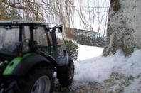 Mini dans la neige.