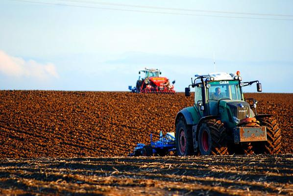 Semis de blé 2013 ...