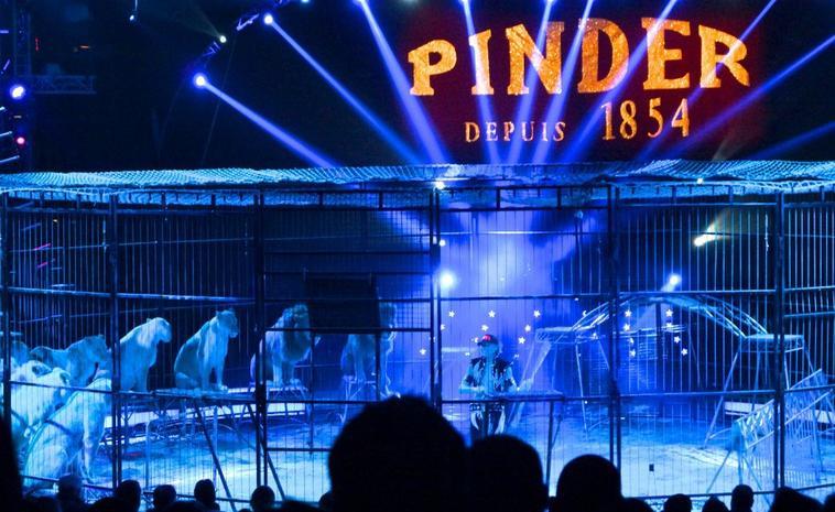 Pinder à Paris , Hiver 2016-2017 . Partie 1