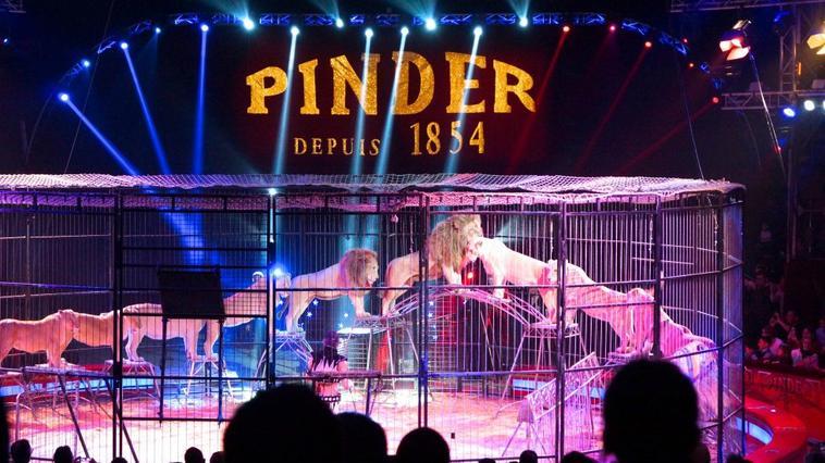 Pinder à Paris , Hiver 2016-2017 . Partie 3
