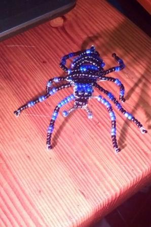 araignée colorée