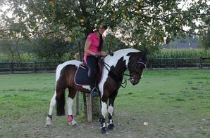 Mon double PONEY : Nelson <3 avril 2015