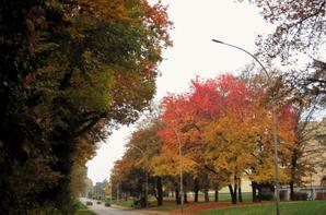 La ville..ma petite ville en automne...