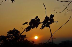 Coucher du Soleil dominical....