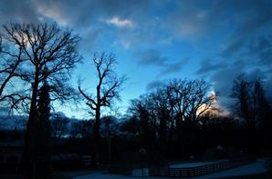 Matin d'hiver....mon Ferney-Voltaire...