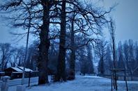 Matin....la neige est la, et bien la....