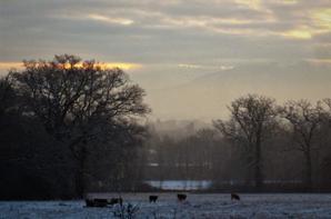 Matin hivernal..le ciel des Alpes....