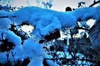 Matin hivernal....