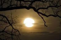 Soleil hivernal....promenade...