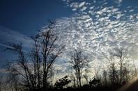 L'hiver............ciel et la terre en symbiose de beauté...