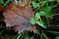Le temps est (encore) hivernal....