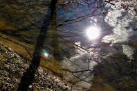 Soleil hivernal....