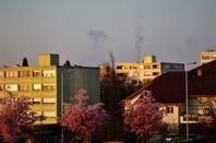Lève du Soleil.... Ferney-Voltaire tout en beauté...