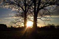 Soleil levant....Ma petite ville est sublimé....