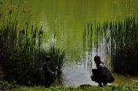 Petit étang de la ville....
