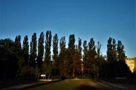 Au lève du Soleil....promenade...