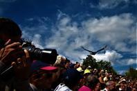 Superbe spectacle au Parc des oiseaux....