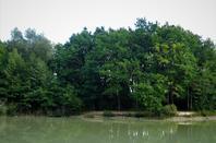Entre la frontière et l'étang...