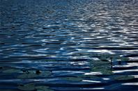 L'eau...Lac au Soleil d'été..