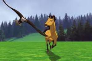 les chevaux ont des coeurs