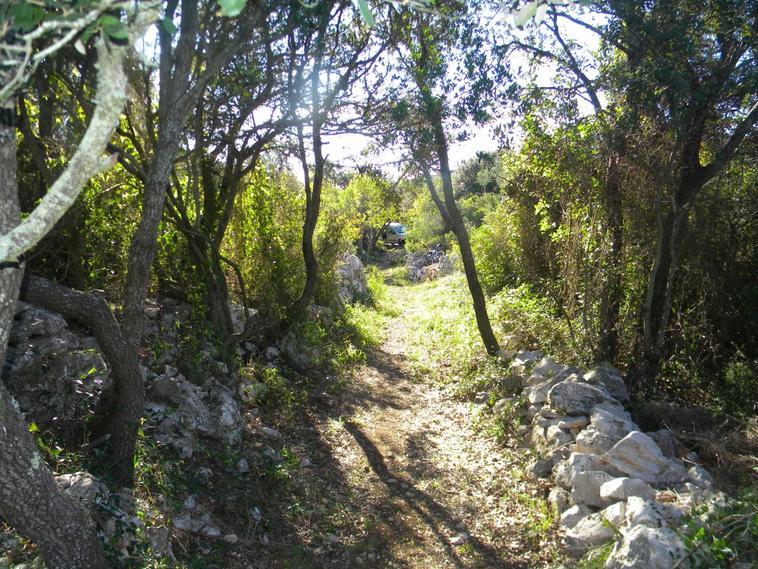 Les Rabasous le Chemin suite ....