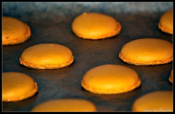 alors mes macarons ....