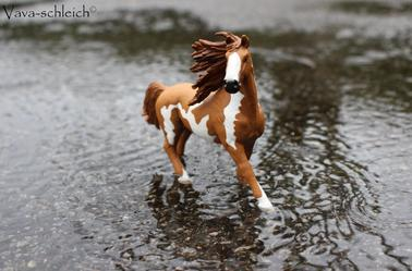 Un cheval dans la tempête.