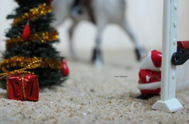 Compétition de Noël au Haras du Lilas !