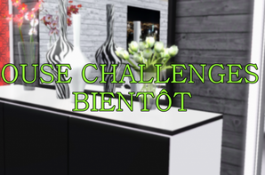 HOUSE CHALLENGES 3 -