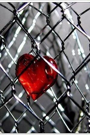 L'amour excuse tout dans un coeur enflammé, Et tout crime est léger dont l'auteur est aimé.