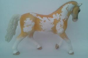Idéale du Foal