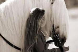 Cheval tu commencera, cheval tu n'oubliera pas !