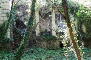 le château de la tourballière (la celle saint avant)