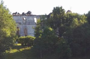 le château de montgoger (saint épain)