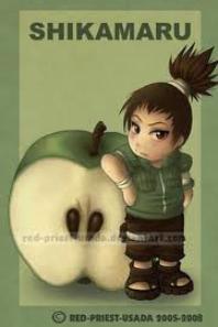 Mes fruits Naruto (3)