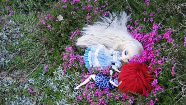 Une nouvelle dans la troupe ~ Bienvenue Senshi !