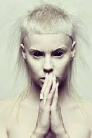 #PLAGIAT / Die Antwoord VS Lady Gaga
