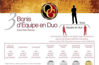 Une fois distributeur chez Organo Gold , voici son fonctionnement en Equipe , vous aussi contruiser votre equipe !!