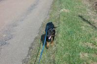 Petite promenade la semaine dernière