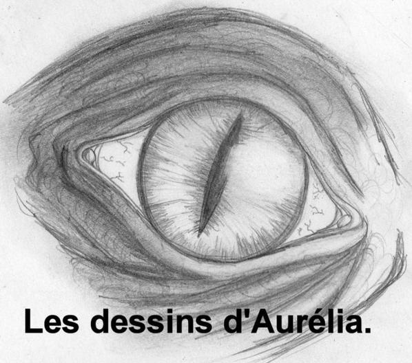 Les dessins d'Aurélia( ma seconde fille 16 ans)