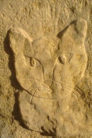 Déco de jardin chat