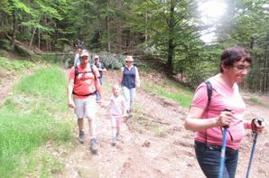 Suite marche AN Vosges sur Gérardmer