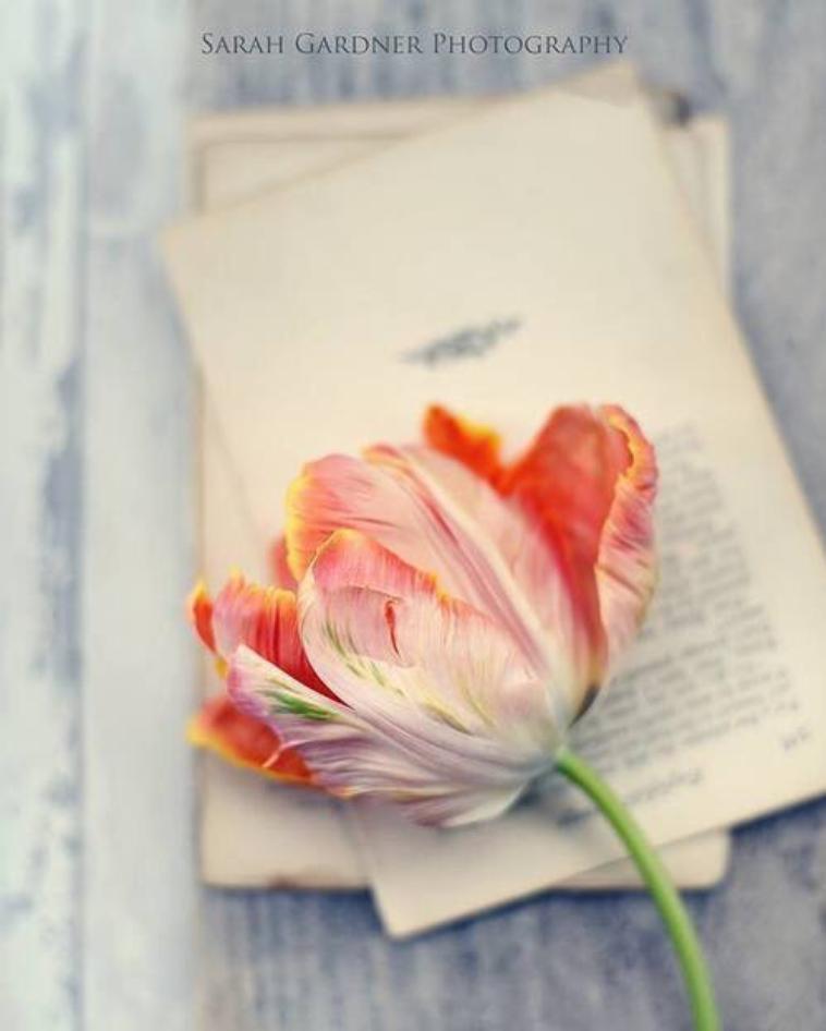 C'est même chose que d'aimer ou d'écrire