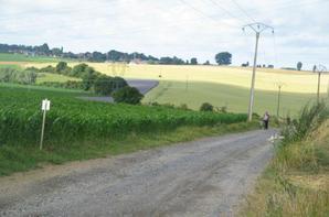 06.07.2014. Rando Beauvois en Cambraisis.