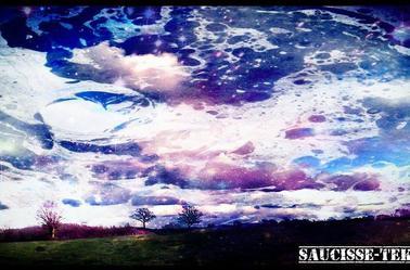 Saucisse-Tek63